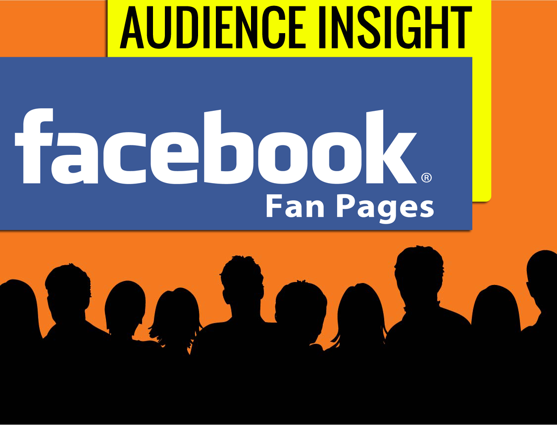 audience-insights-facebook-pagine-fan