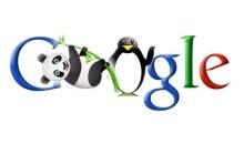 Google, SEO e Penguin: a breve il prossimo aggiornamento di algoritmo