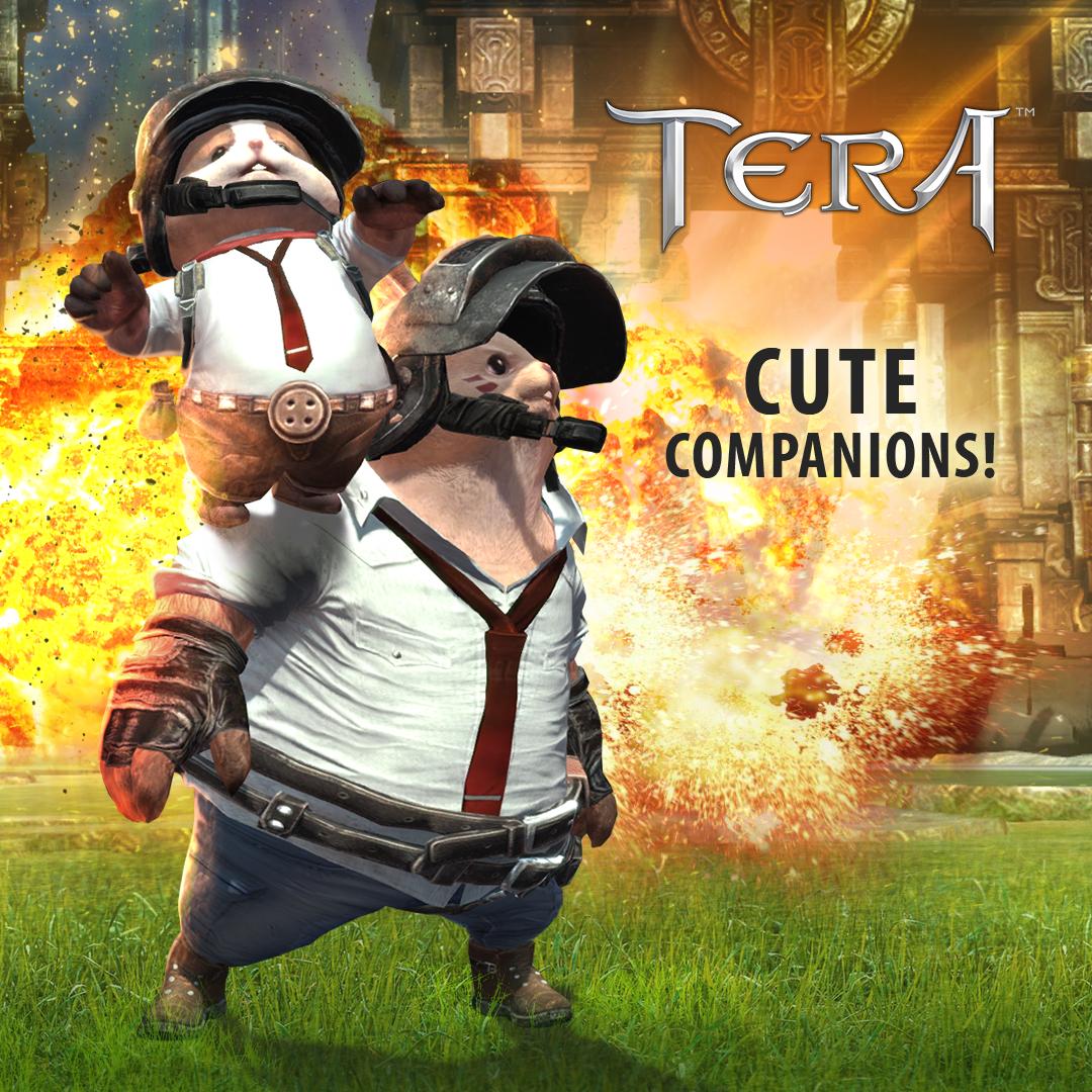 tera pubg3