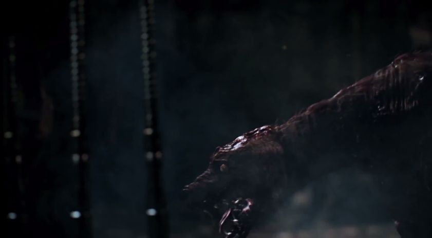 BLOODBORNE VIDEO TRAILER CHALICE DUNGEONS